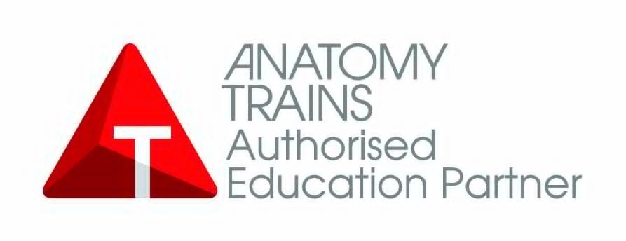 Anatomy Trains Structure and Function zajęcia fizjoterapia