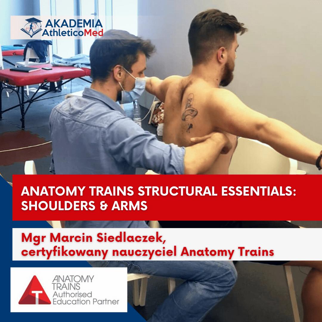 anatomy trains structrural essentials shoulders arms siedlaczek